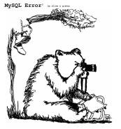 MySQL Error cartoon bear